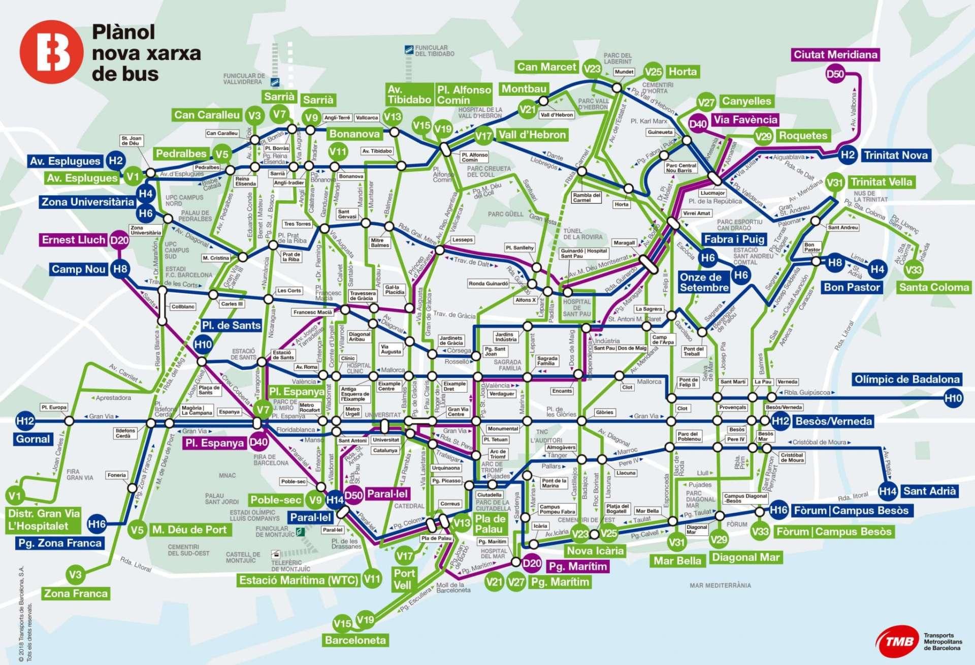 Mapa specjalnych linii Autobusowych