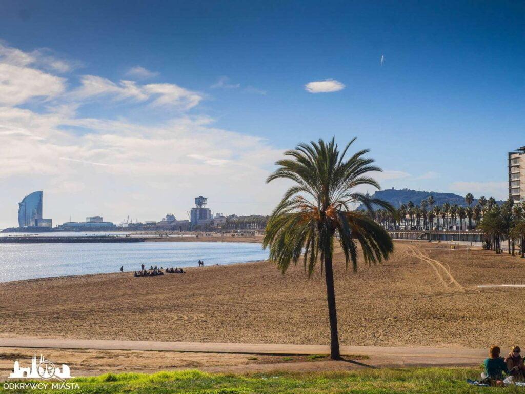 Barcelona miasto warte zdjęcia Barceloneta
