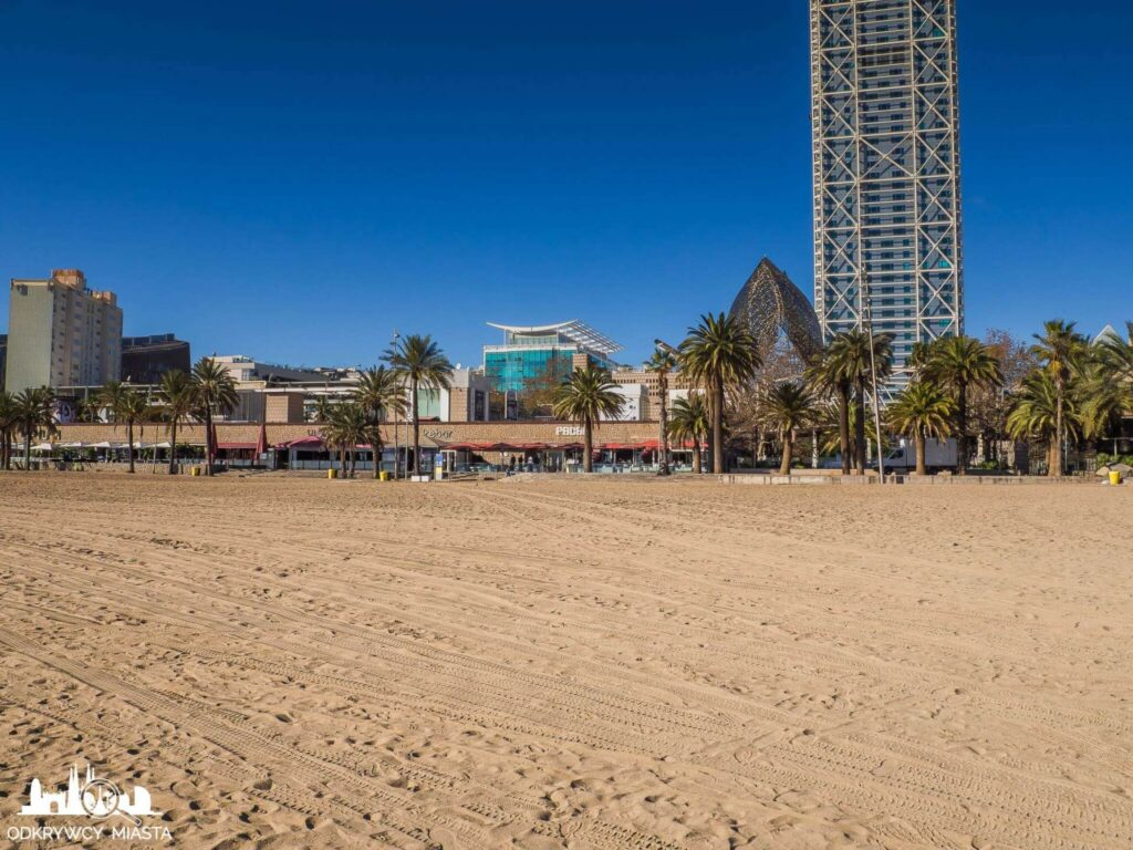 plaża barceloneta  piasek i hotel arts