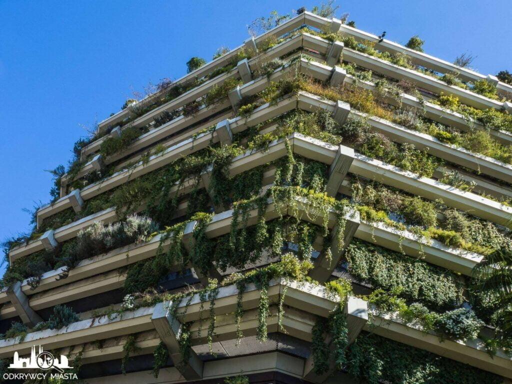 Pionowa ogrody fundacja planeta wiszący ogród