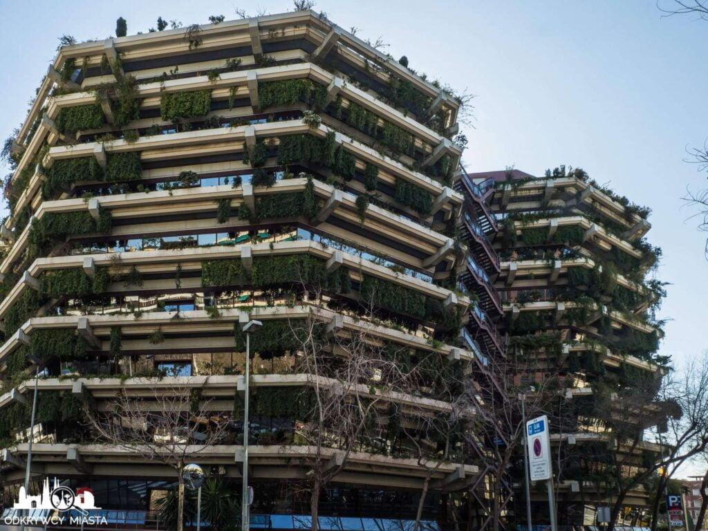 Pionowa ogrody fundacja planeta dwa wysokie budynki