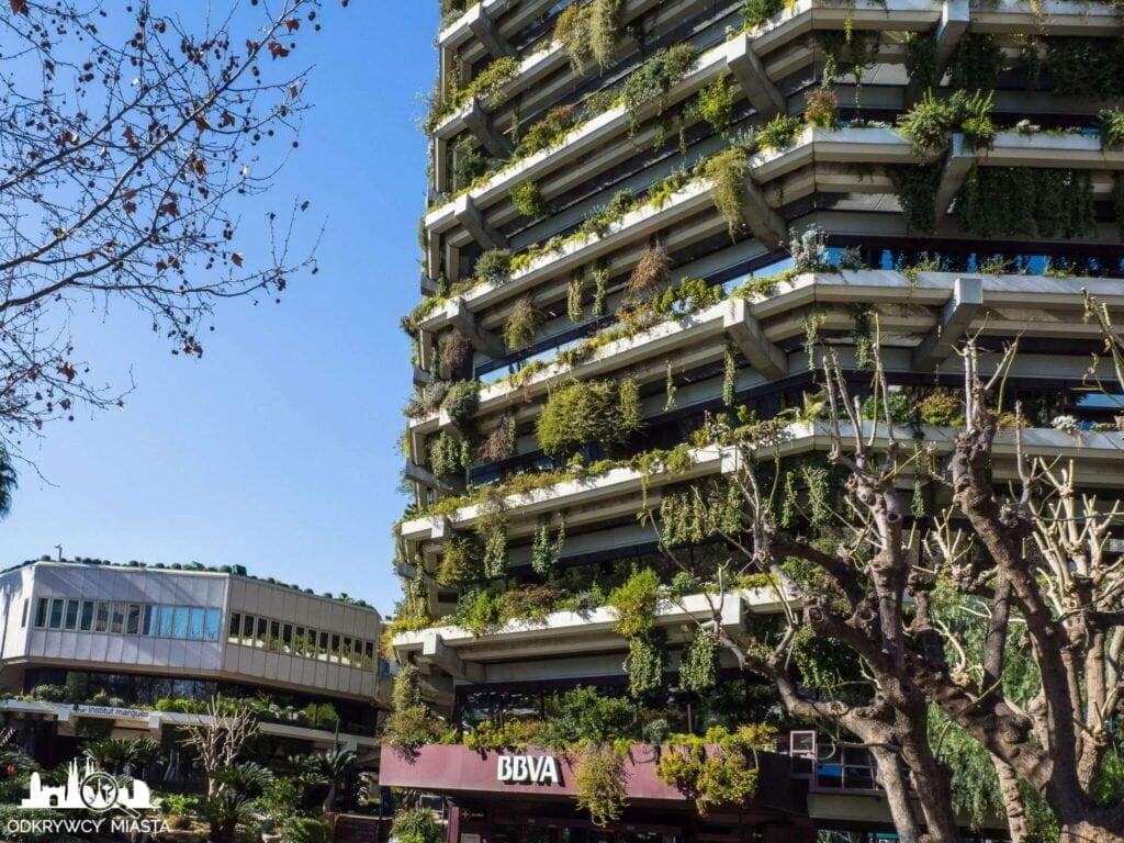 Pionowa ogrody fundacja planeta wejscie do banku bbva