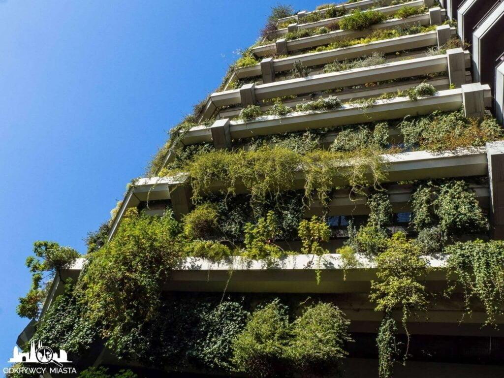 Pionowa ogrody fundacja planeta rośliny na budynku