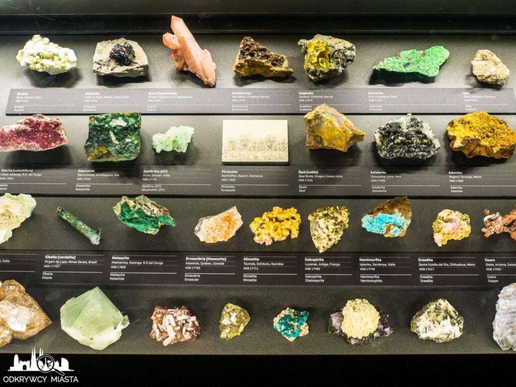Muzeum Historii Naturalnej tablica z wieloma skałami i minerałami