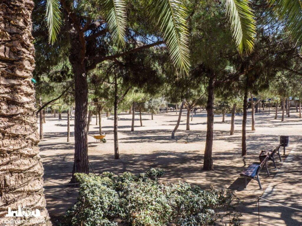 Park joan miro ławki i młode drzewka