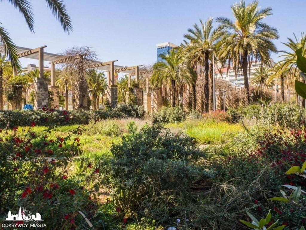 Park joan miro widok na krzewy i palmy