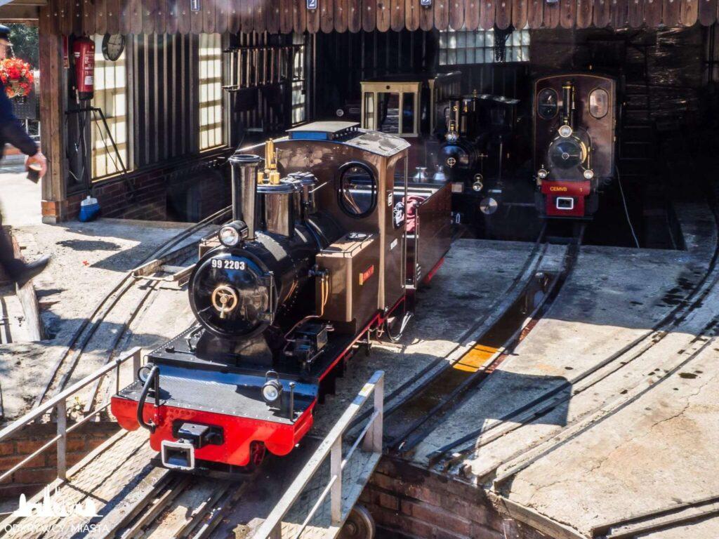 Park z pociągami l'oreneta lokomotywa na rozdzielni kolejowej